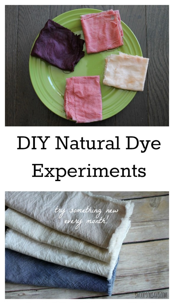 An experiment with natural food dyes!
