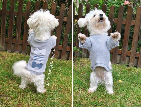 dog tshirt sewing pattern