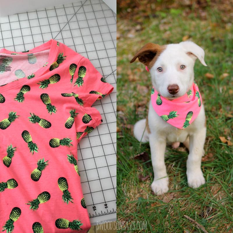 upcycle tshirt to dog scarf